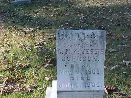 JOHNSON, WILLIE C - Cleveland County, Arkansas   WILLIE C JOHNSON - Arkansas Gravestone Photos