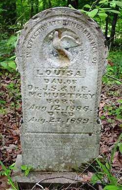 MCMURTREY, LOUISA - Cleveland County, Arkansas | LOUISA MCMURTREY - Arkansas Gravestone Photos