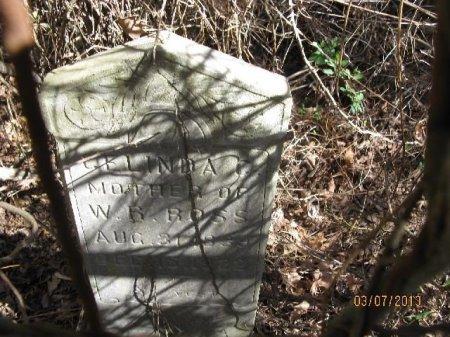 ROSS, CELINDA CATHERINE - Cleveland County, Arkansas | CELINDA CATHERINE ROSS - Arkansas Gravestone Photos