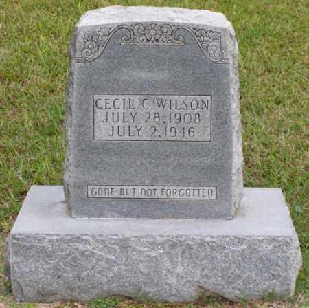 WILSON, CECIL C - Cleveland County, Arkansas | CECIL C WILSON - Arkansas Gravestone Photos