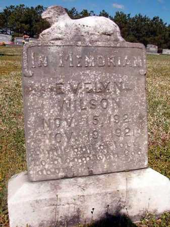 WILSON, EVELYN - Cleveland County, Arkansas | EVELYN WILSON - Arkansas Gravestone Photos