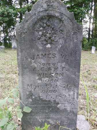 WILSON, JAMES W - Cleveland County, Arkansas | JAMES W WILSON - Arkansas Gravestone Photos