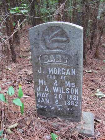 WILSON, J MORGAN - Cleveland County, Arkansas | J MORGAN WILSON - Arkansas Gravestone Photos