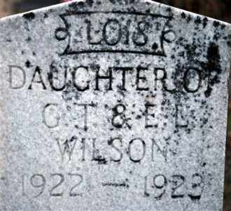WILSON, LOIS - Cleveland County, Arkansas | LOIS WILSON - Arkansas Gravestone Photos