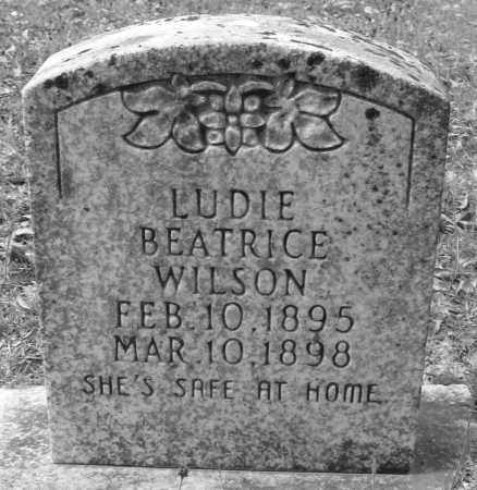 WILSON, LUDIE BEATRICE - Cleveland County, Arkansas   LUDIE BEATRICE WILSON - Arkansas Gravestone Photos