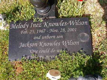 WILSON, JACKSON KNOWLES - Cleveland County, Arkansas | JACKSON KNOWLES WILSON - Arkansas Gravestone Photos