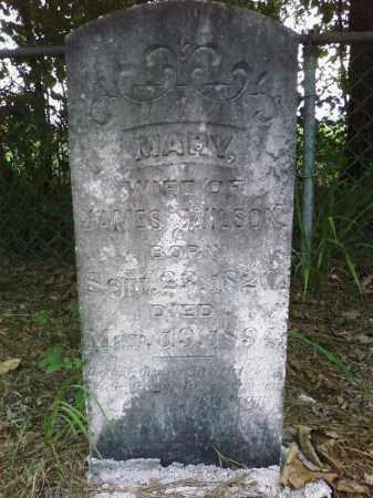 WILSON, MARY - Cleveland County, Arkansas   MARY WILSON - Arkansas Gravestone Photos