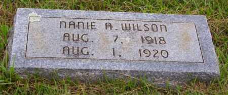 WILSON, NANIE AMANDA - Cleveland County, Arkansas | NANIE AMANDA WILSON - Arkansas Gravestone Photos