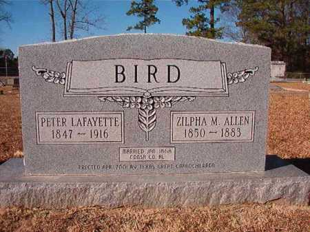 BIRD, PETER LAFAYETTE - Columbia County, Arkansas | PETER LAFAYETTE BIRD - Arkansas Gravestone Photos
