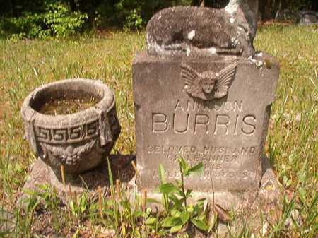 BURRIS, ANNISON - Columbia County, Arkansas   ANNISON BURRIS - Arkansas Gravestone Photos