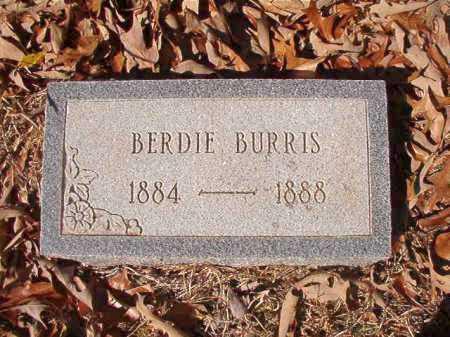 BURRIS, BERDIE - Columbia County, Arkansas | BERDIE BURRIS - Arkansas Gravestone Photos
