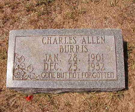 BURRIS, CHARLES ALLEN - Columbia County, Arkansas   CHARLES ALLEN BURRIS - Arkansas Gravestone Photos