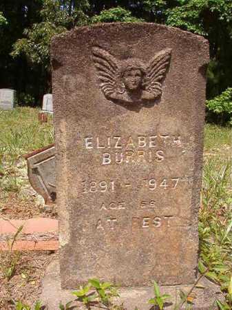 BURRIS, ELIZABETH - Columbia County, Arkansas | ELIZABETH BURRIS - Arkansas Gravestone Photos