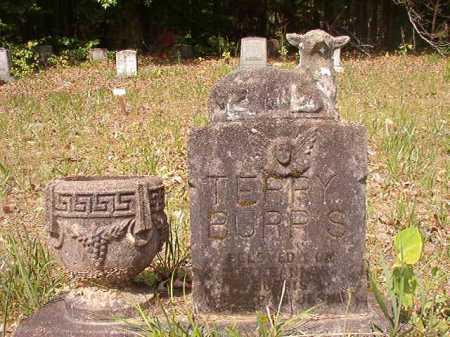 BURRIS, TERRY - Columbia County, Arkansas   TERRY BURRIS - Arkansas Gravestone Photos