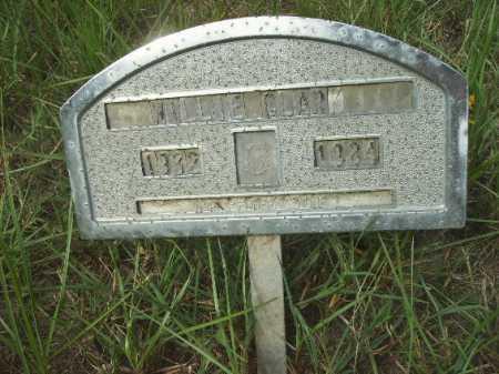 CLARK, WILLIE - Columbia County, Arkansas   WILLIE CLARK - Arkansas Gravestone Photos