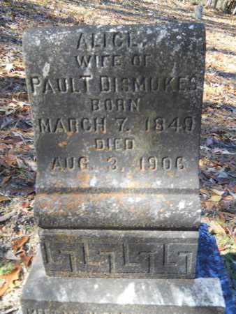 DISMUKES, ALICE - Columbia County, Arkansas | ALICE DISMUKES - Arkansas Gravestone Photos