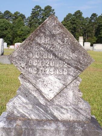 JORDAN, MARY ANN - Columbia County, Arkansas | MARY ANN JORDAN - Arkansas Gravestone Photos