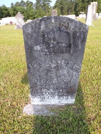 JORDAN, ULYSSES E - Columbia County, Arkansas   ULYSSES E JORDAN - Arkansas Gravestone Photos