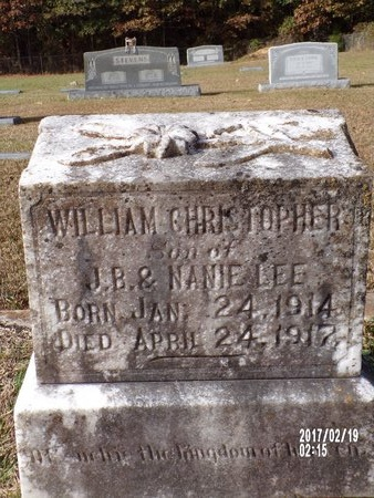LEE, WILLIAM CHRISTOPHER - Columbia County, Arkansas | WILLIAM CHRISTOPHER LEE - Arkansas Gravestone Photos
