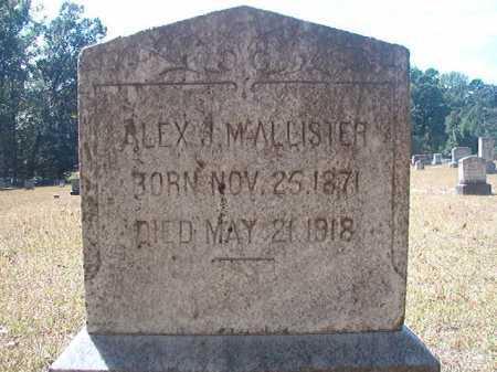 MCALLISTER, ALEX J - Columbia County, Arkansas | ALEX J MCALLISTER - Arkansas Gravestone Photos