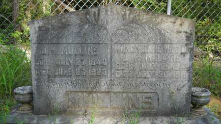 MULLINS, NANCY JANE - Columbia County, Arkansas | NANCY JANE MULLINS - Arkansas Gravestone Photos