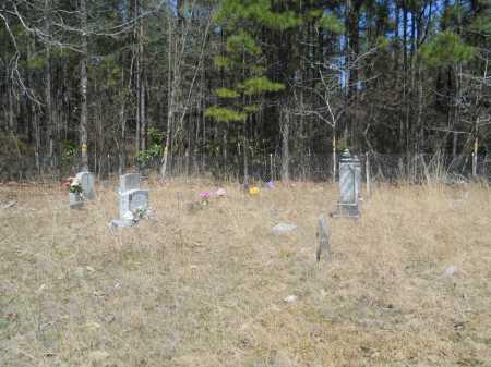 *OVERVIEW,  - Columbia County, Arkansas |  *OVERVIEW - Arkansas Gravestone Photos