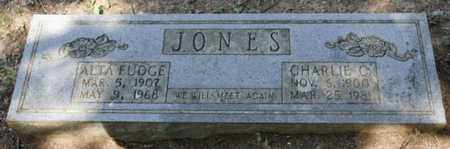 JONES, CHARLIE C. - Conway County, Arkansas | CHARLIE C. JONES - Arkansas Gravestone Photos