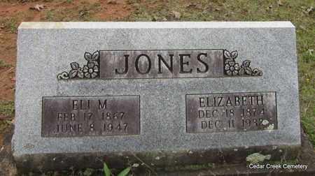 JONES, ELI M - Conway County, Arkansas | ELI M JONES - Arkansas Gravestone Photos