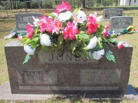 JONES, HENRY GUSTAV - Conway County, Arkansas | HENRY GUSTAV JONES - Arkansas Gravestone Photos