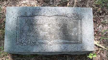 JONES, MERRY LAYNE - Conway County, Arkansas | MERRY LAYNE JONES - Arkansas Gravestone Photos