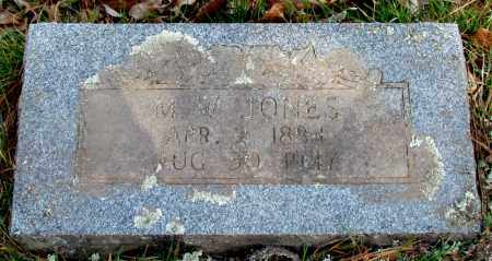JONES, M W - Conway County, Arkansas | M W JONES - Arkansas Gravestone Photos