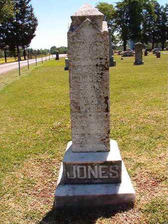 JONES, W S L - Conway County, Arkansas | W S L JONES - Arkansas Gravestone Photos