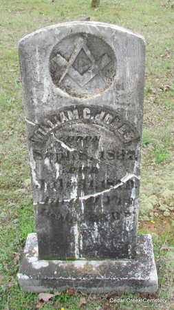 JONES, WILLIAM C - Conway County, Arkansas | WILLIAM C JONES - Arkansas Gravestone Photos