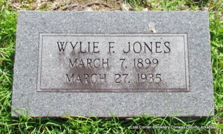 JONES, WYLIE F - Conway County, Arkansas | WYLIE F JONES - Arkansas Gravestone Photos
