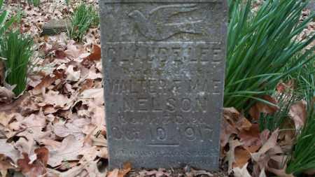 NELSON, CLAUDE LEE - Conway County, Arkansas   CLAUDE LEE NELSON - Arkansas Gravestone Photos