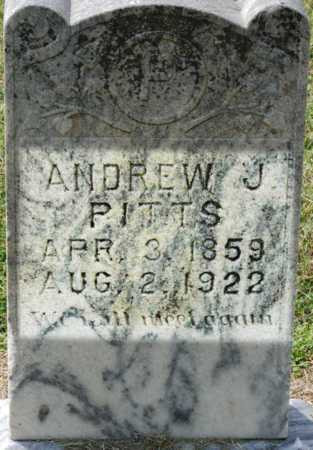 PITTS, ANDREW - Craighead County, Arkansas   ANDREW PITTS - Arkansas Gravestone Photos