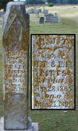 PITTS, H J T - Craighead County, Arkansas | H J T PITTS - Arkansas Gravestone Photos