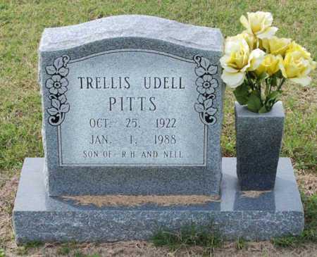 PITTS, TRELLIS - Craighead County, Arkansas   TRELLIS PITTS - Arkansas Gravestone Photos