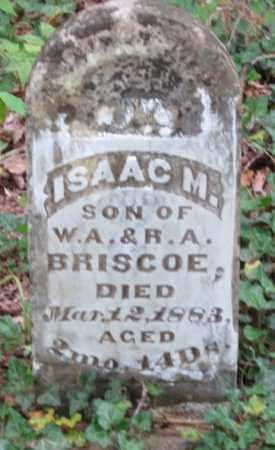 BRISCOE, ISAAC M - Crawford County, Arkansas   ISAAC M BRISCOE - Arkansas Gravestone Photos