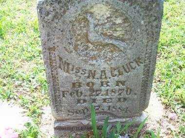 CLUCK, MISS N A - Crawford County, Arkansas | MISS N A CLUCK - Arkansas Gravestone Photos