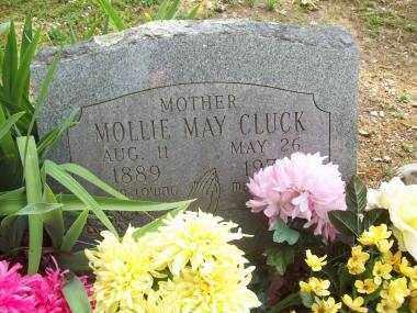 CLUCK, MOLLIE MAY - Crawford County, Arkansas | MOLLIE MAY CLUCK - Arkansas Gravestone Photos