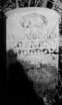 CROSSON, W A - Crawford County, Arkansas   W A CROSSON - Arkansas Gravestone Photos