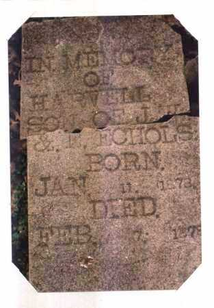 ECHOLS, HARVELL - Crawford County, Arkansas   HARVELL ECHOLS - Arkansas Gravestone Photos