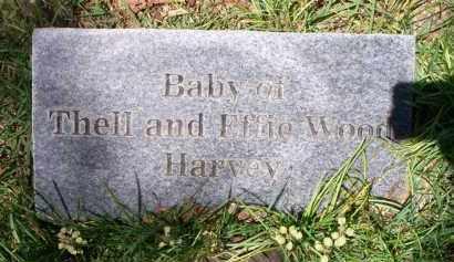 HARVEY, BABY - Crawford County, Arkansas | BABY HARVEY - Arkansas Gravestone Photos