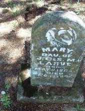 LARUE, MARY - Crawford County, Arkansas   MARY LARUE - Arkansas Gravestone Photos