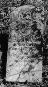 MANLY, LAUNIE - Crawford County, Arkansas   LAUNIE MANLY - Arkansas Gravestone Photos