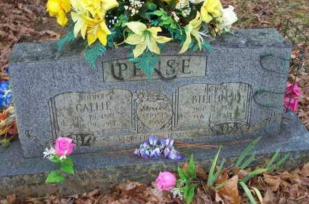 PENSE, BILL (W   H ) - Crawford County, Arkansas   BILL (W   H ) PENSE - Arkansas Gravestone Photos
