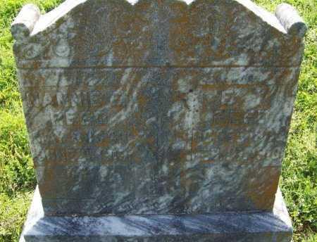 REED, NANNIE E  - Crawford County, Arkansas | NANNIE E  REED - Arkansas Gravestone Photos