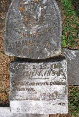 REED, JIMIMIE L - Crawford County, Arkansas | JIMIMIE L REED - Arkansas Gravestone Photos