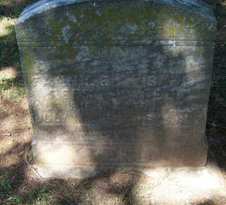 REED, FANNIE E - Crawford County, Arkansas | FANNIE E REED - Arkansas Gravestone Photos